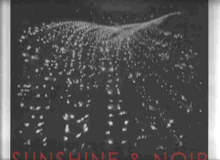 Sunshine & Noir Photographs of Los Angeles