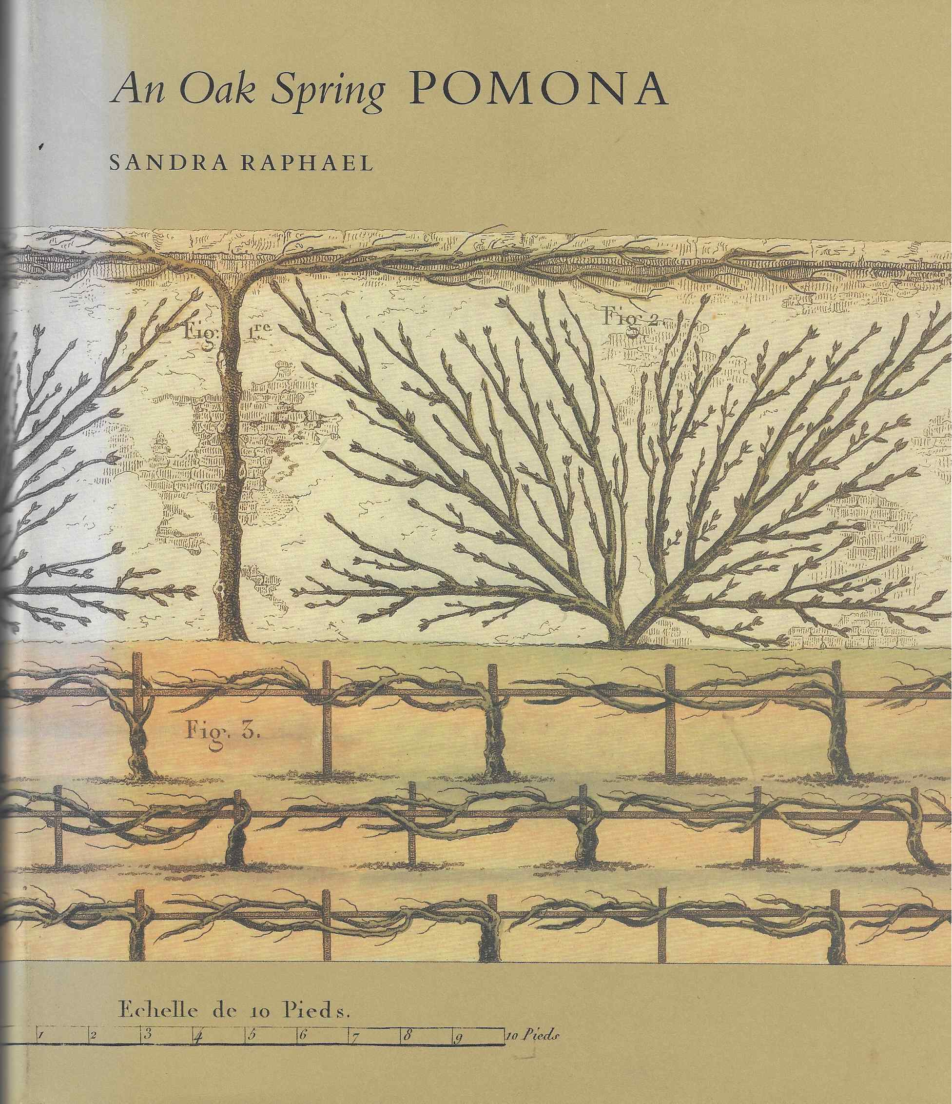 Image for An Oak Spring Pomona A Selection of the Rare Books on Fruit in the Oak Spring Garden Library: Pomona Vol 2