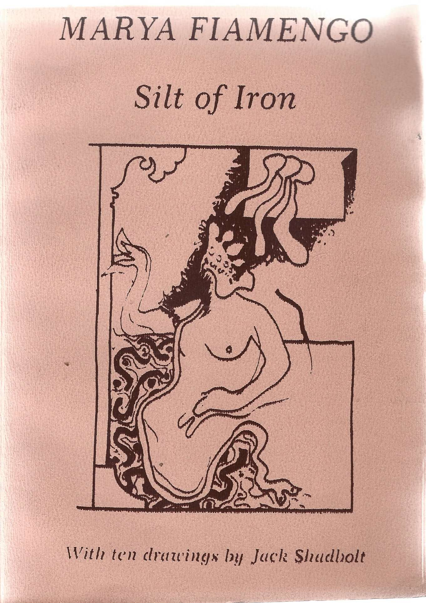 Image for Silt of Iron